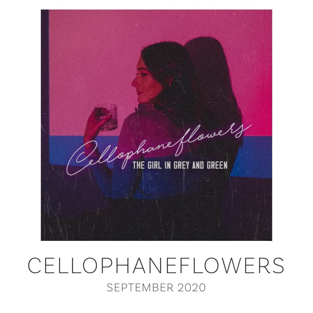 Cellophaneflowers